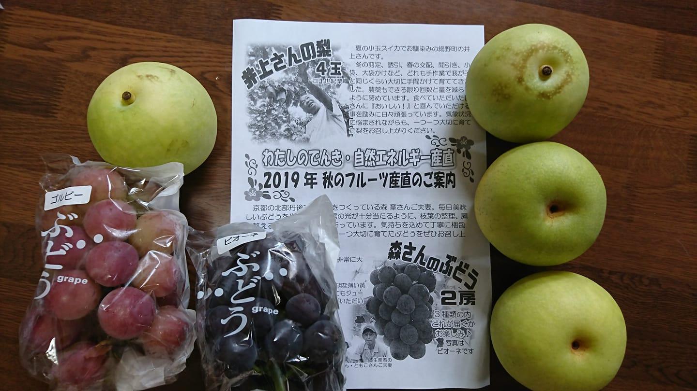 http://www.inoue-satoshi.com/diary/%E7%94%A3%E7%9B%B4%E3%83%95%E3%83%AB%E3%83%BC%E3%83%84.jpg