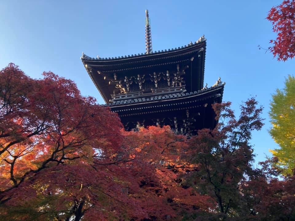 http://www.inoue-satoshi.com/diary/11.14%E7%9C%9F%E5%A6%82%E5%A0%82.jpg