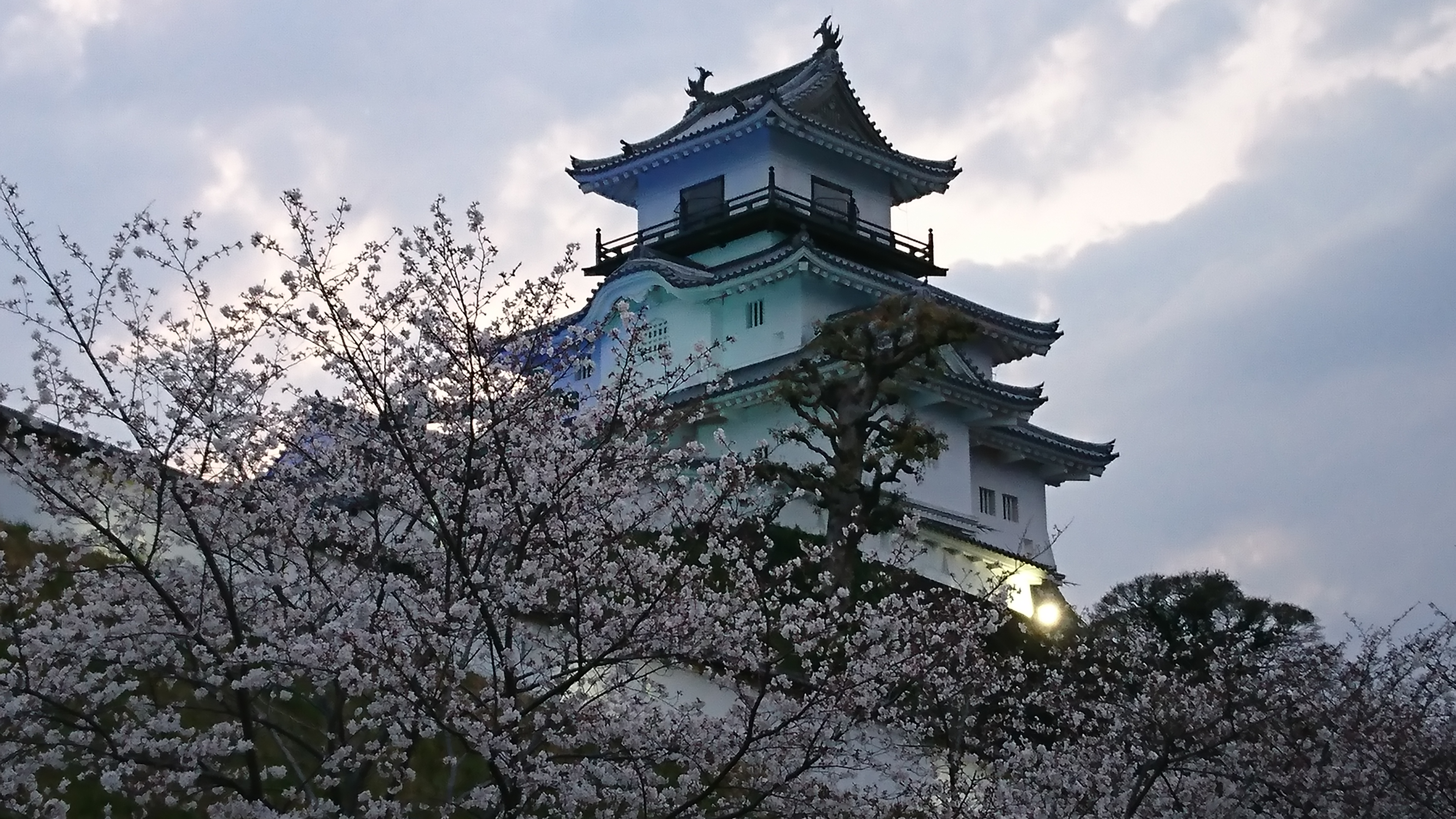 http://www.inoue-satoshi.com/diary/DSC_0056.JPG